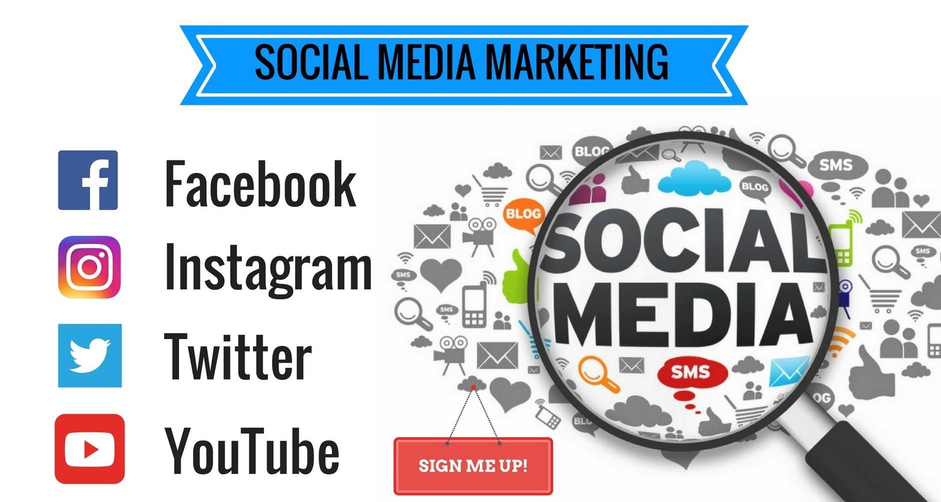 Expert in Social Media Marketing